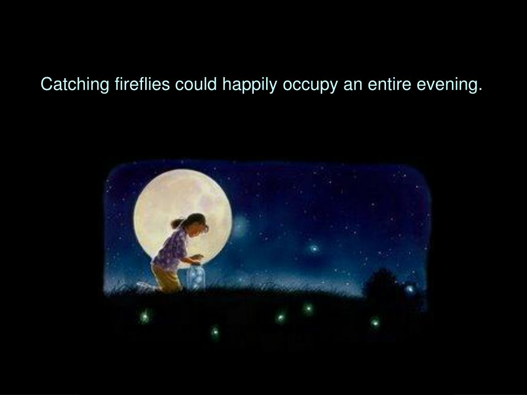 Catching fireflies could happily occupy an entire evening.