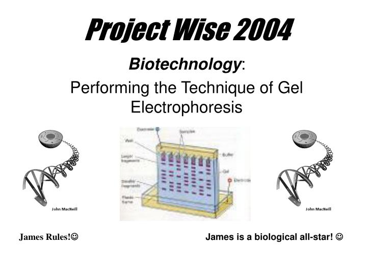 Project wise 2004