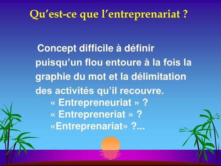 Qu est ce que l entreprenariat