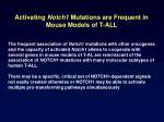 activating notch1 mutations are frequent in mouse models of t all26