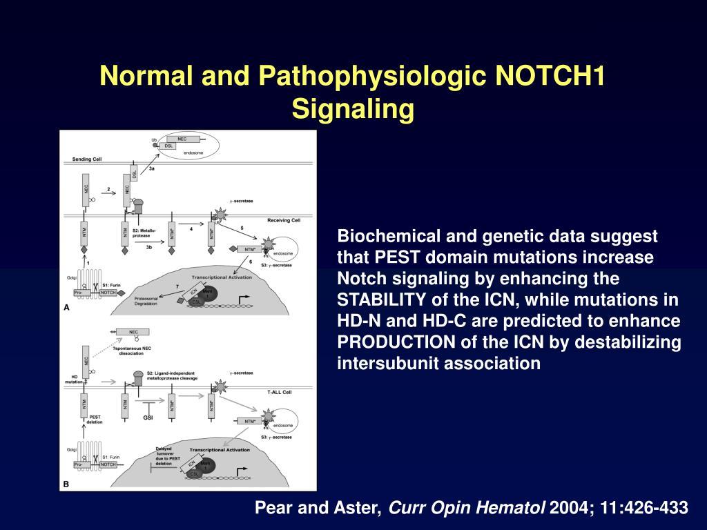 Normal and Pathophysiologic NOTCH1 Signaling