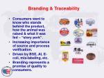 branding traceability