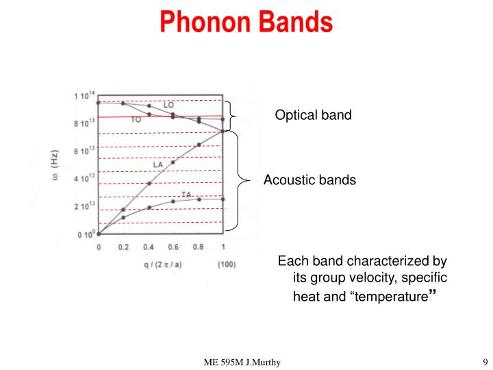Phonon Bands