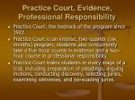 practice court evidence professional responsibility