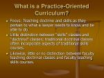 what is a practice oriented curriculum