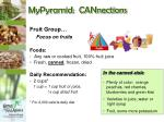 mypyramid cannections10