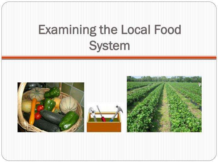 Examining the local food system