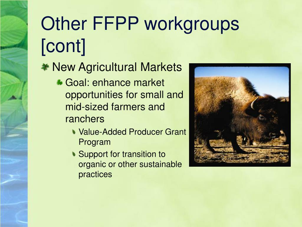 Other FFPP workgroups [cont]