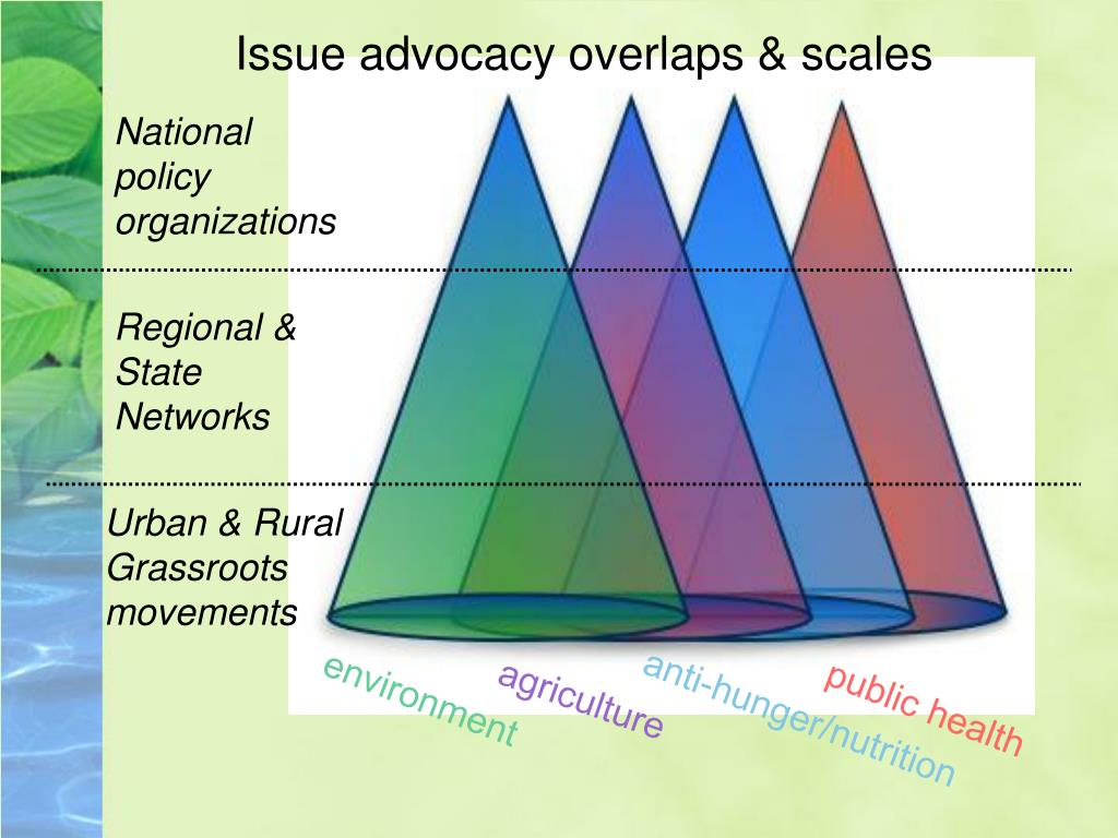 Issue advocacy overlaps & scales