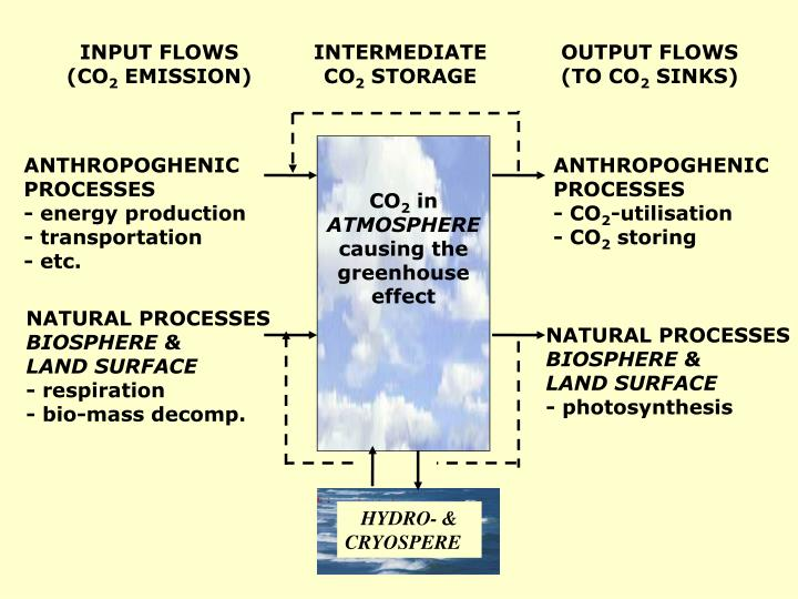 the role of co2 in global It further questions the assumed fundamental role of the amo for the  co2 and the gridded global mean temperature anomalies (gmta) (b.