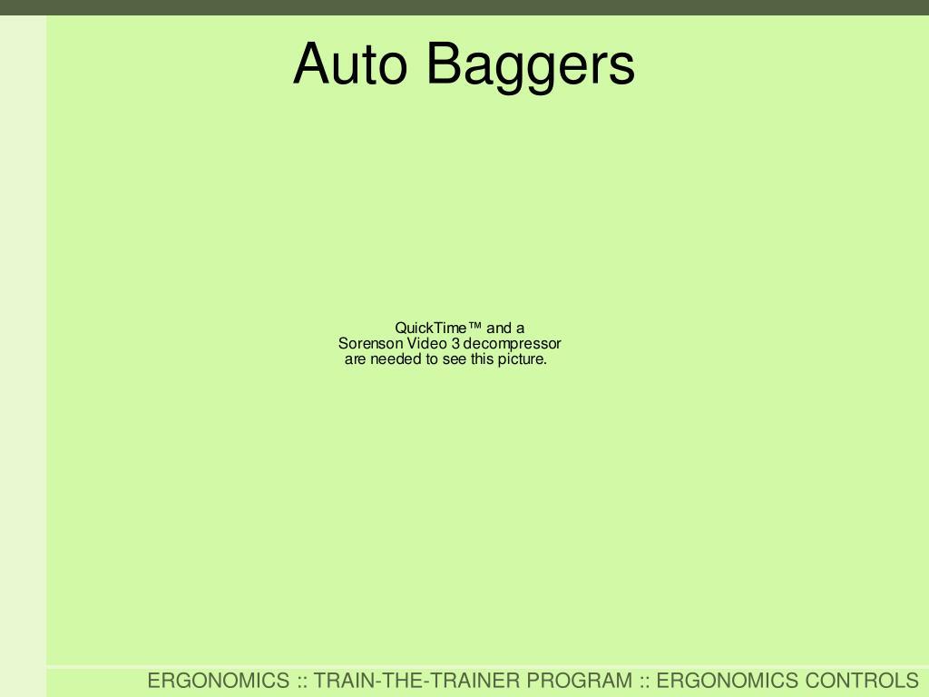 Auto Baggers