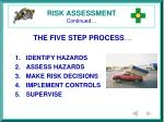 risk assessment continued