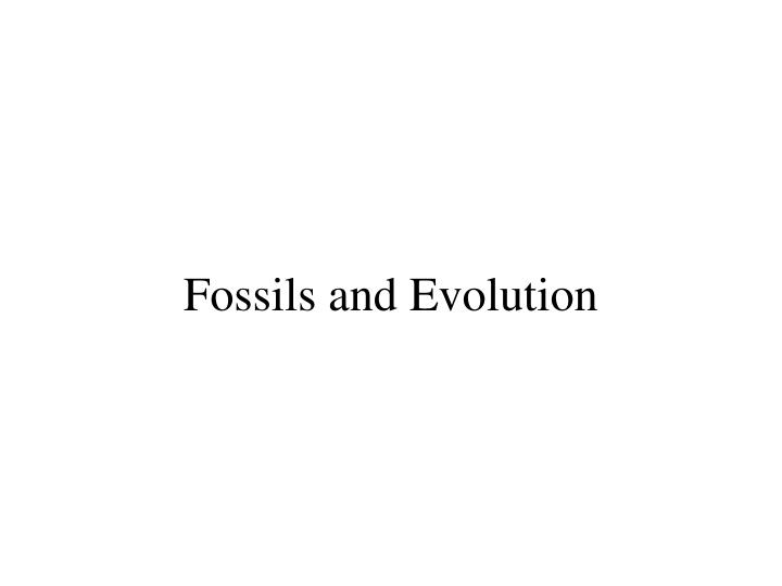 fossils and evolution n.