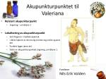 akupunkturpunktet til valeriana