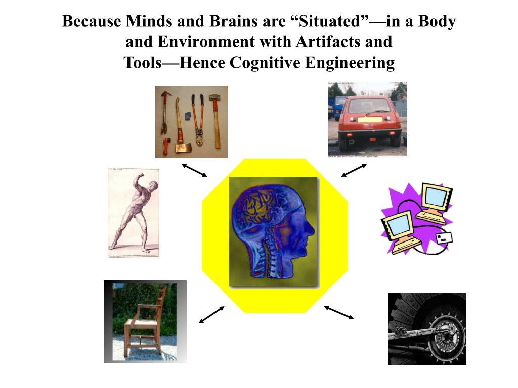 """Because Minds and Brains are """"Situated""""—in a Body"""