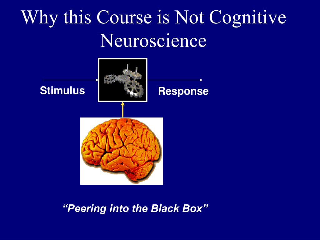 Why this Course is Not Cognitive Neuroscience