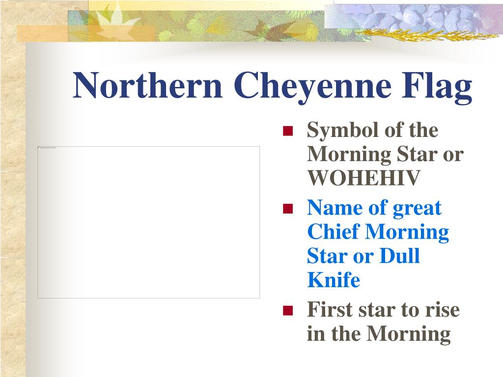 Northern Cheyenne Flag