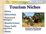 tourism niches