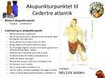 akupunkturpunktet til cedertre atlantik