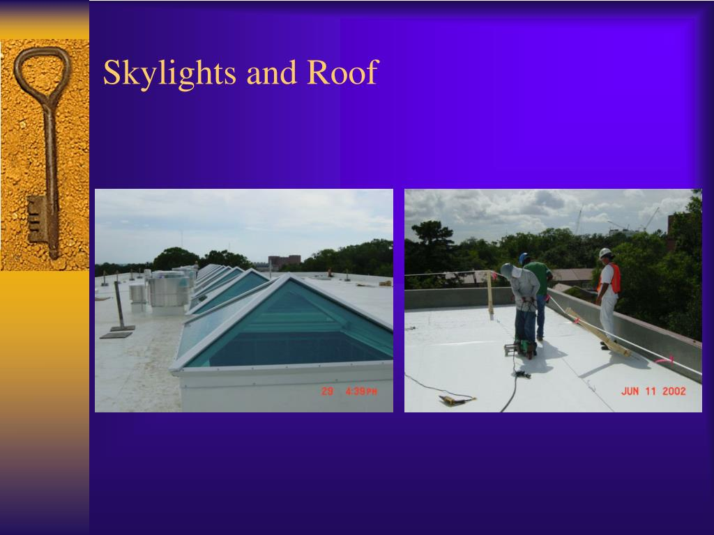 Skylights and Roof