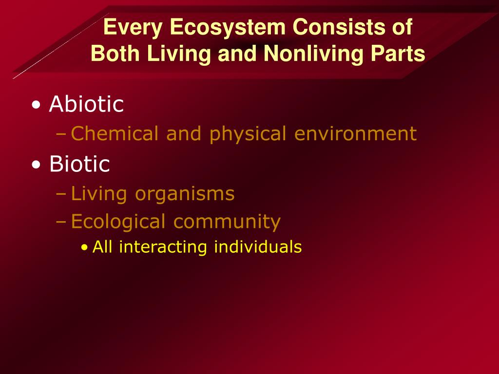 Every Ecosystem Consists of Both Living and Nonliving Parts
