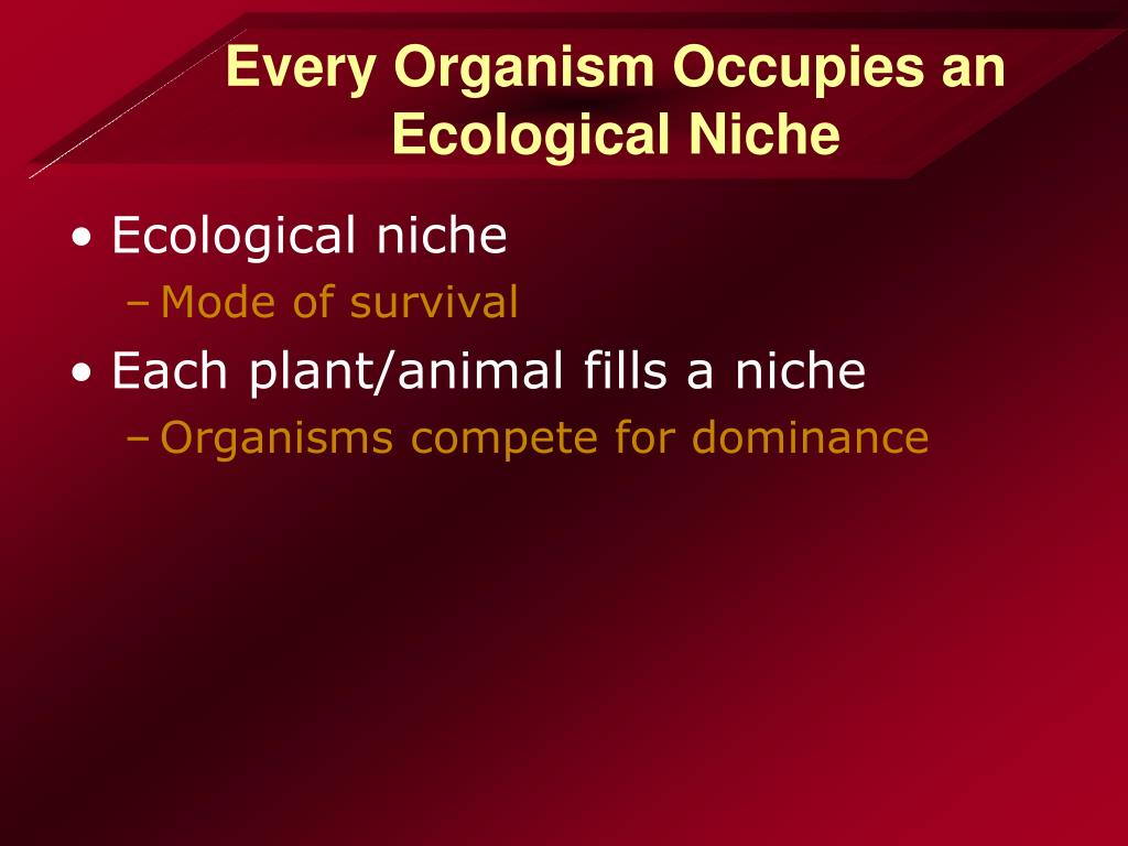 Every Organism Occupies an Ecological Niche