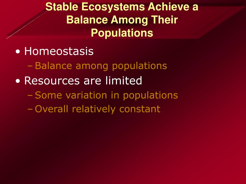 Stable Ecosystems Achieve a Balance Among Their Populations