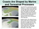 coasts are shaped by marine and terrestrial processes6