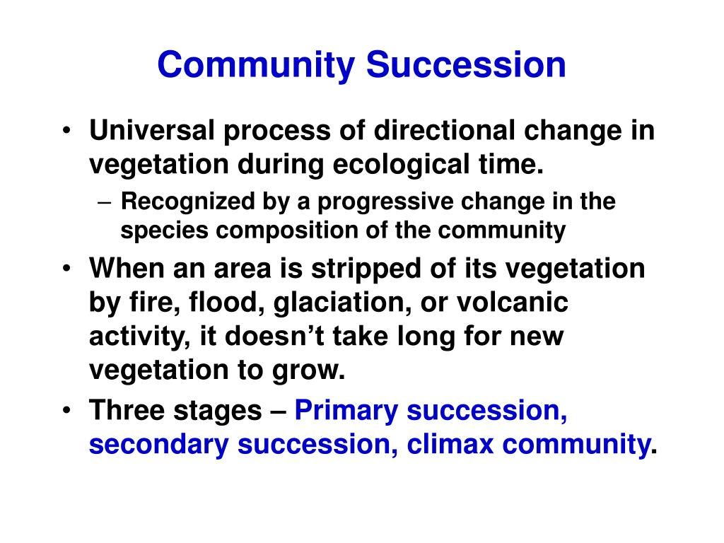 community succession l.