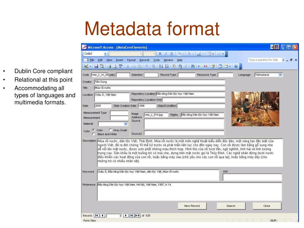 Metadata format
