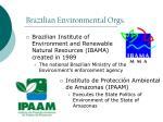 brazilian environmental orgs