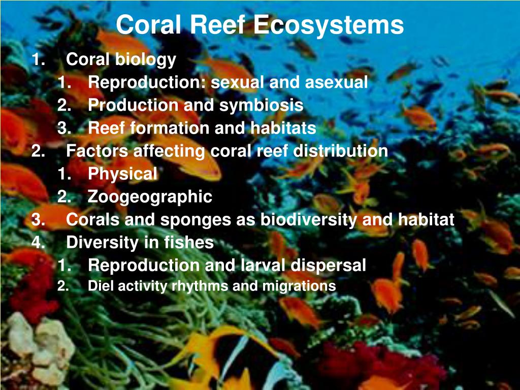 coral reef ecosystems l.