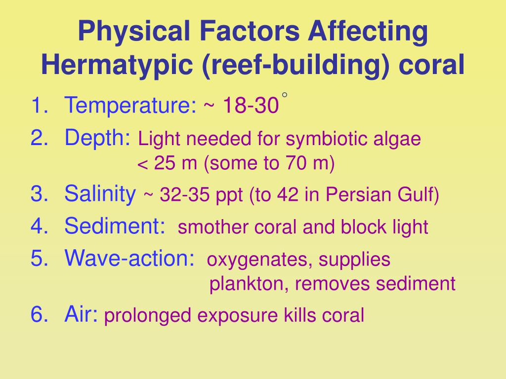 Physical Factors Affecting Hermatypic (reef-building) coral