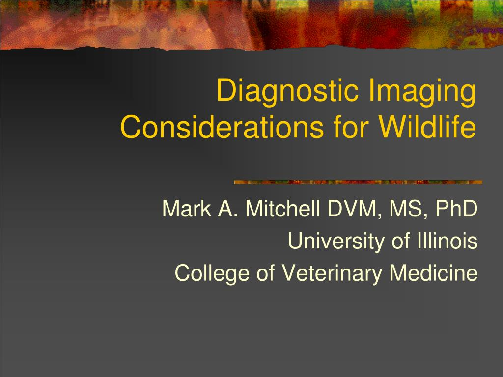 diagnostic imaging considerations for wildlife l.