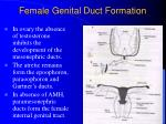 female genital duct formation