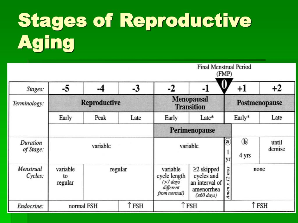 Stages of Reproductive Aging