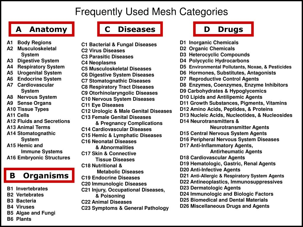 Frequently Used Mesh Categories
