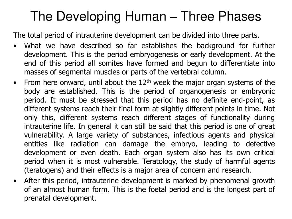 The Developing Human – Three Phases