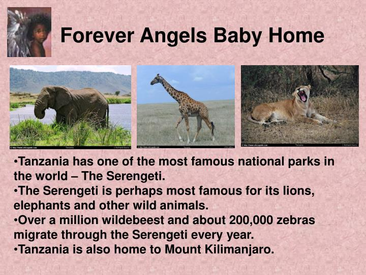 Forever angels baby home3