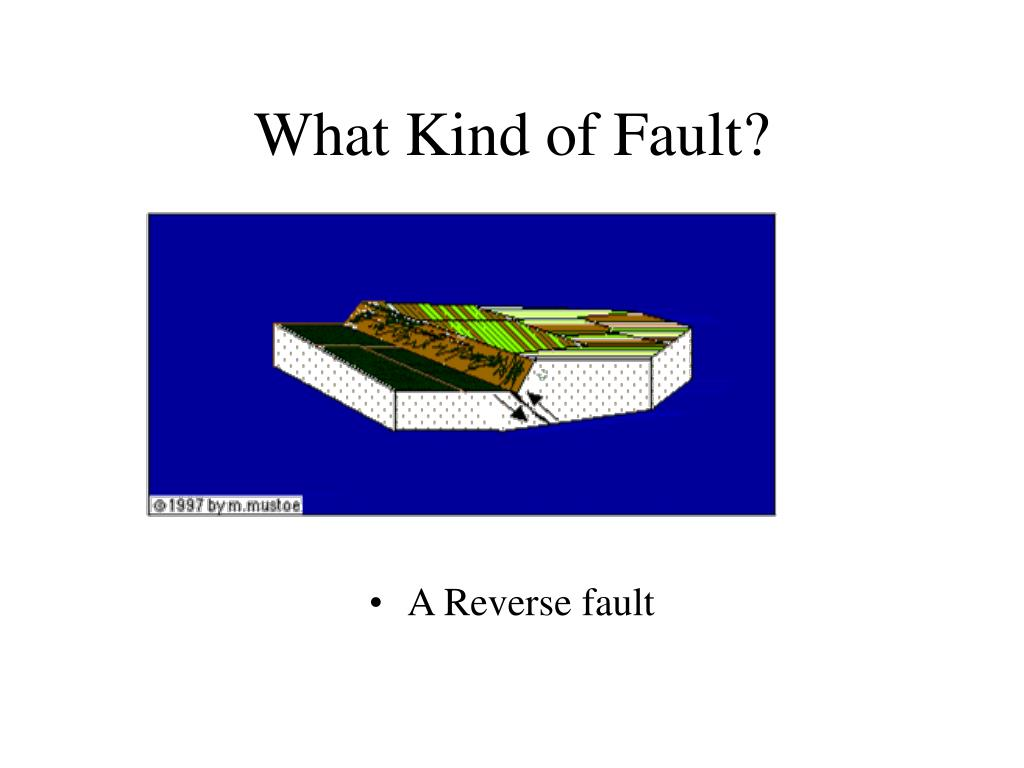 What Kind of Fault?