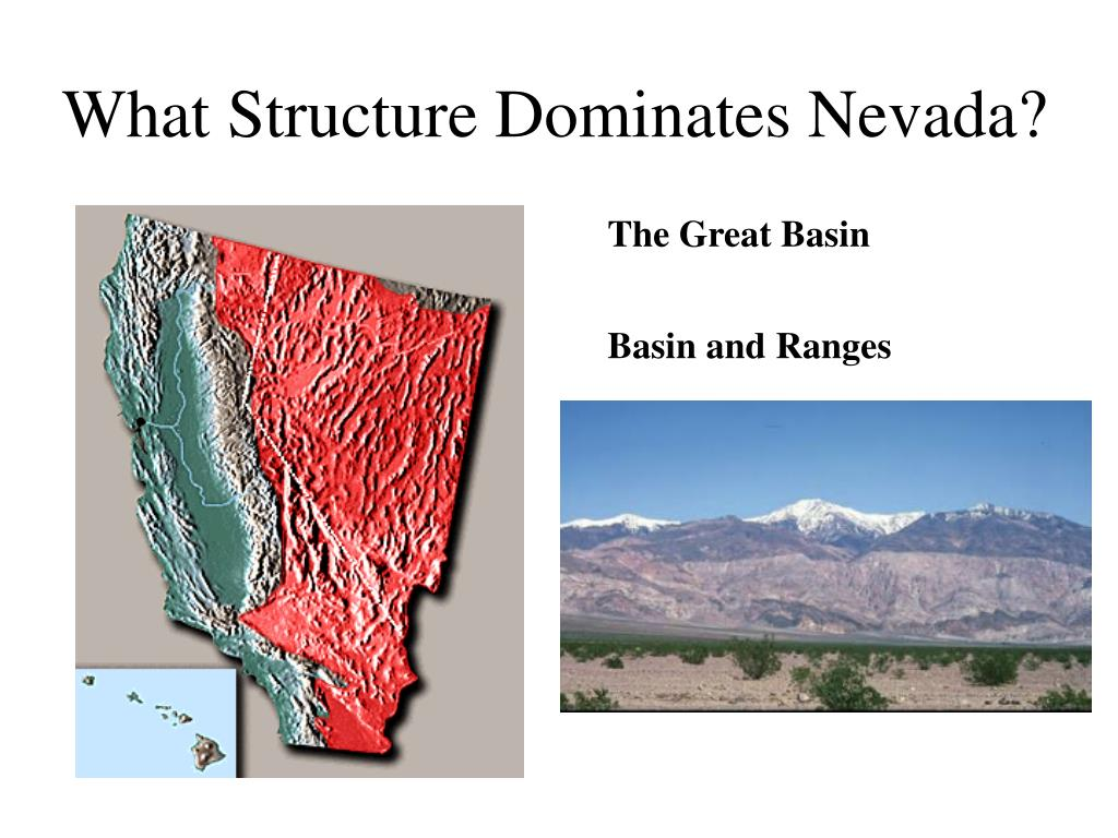 What Structure Dominates Nevada?