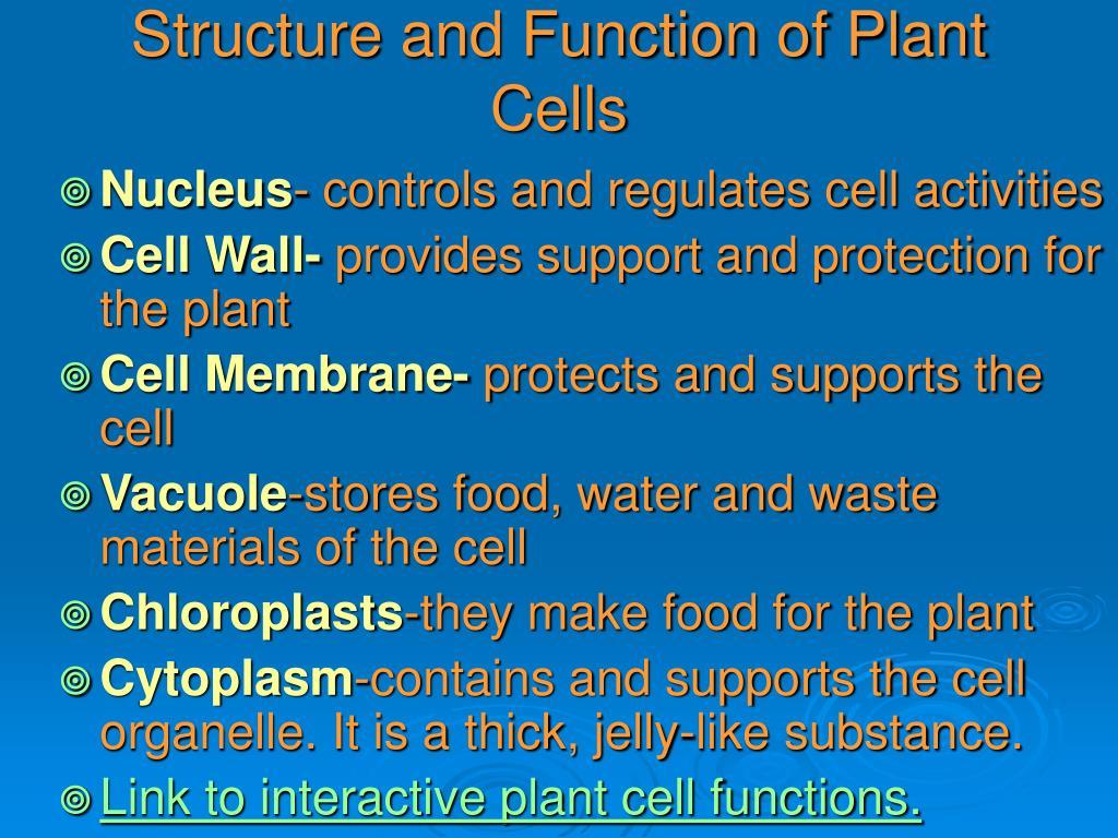 PPT - Cells/Living Systems SOL 5.5 by Ellen Benegar ...