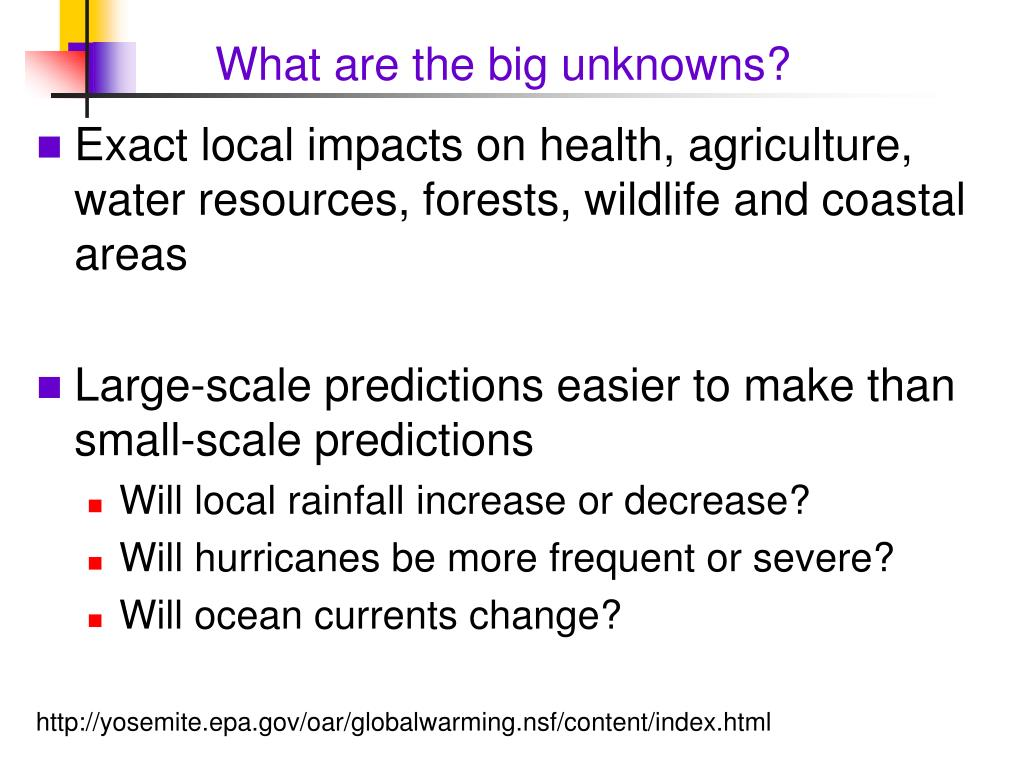 What are the big unknowns?