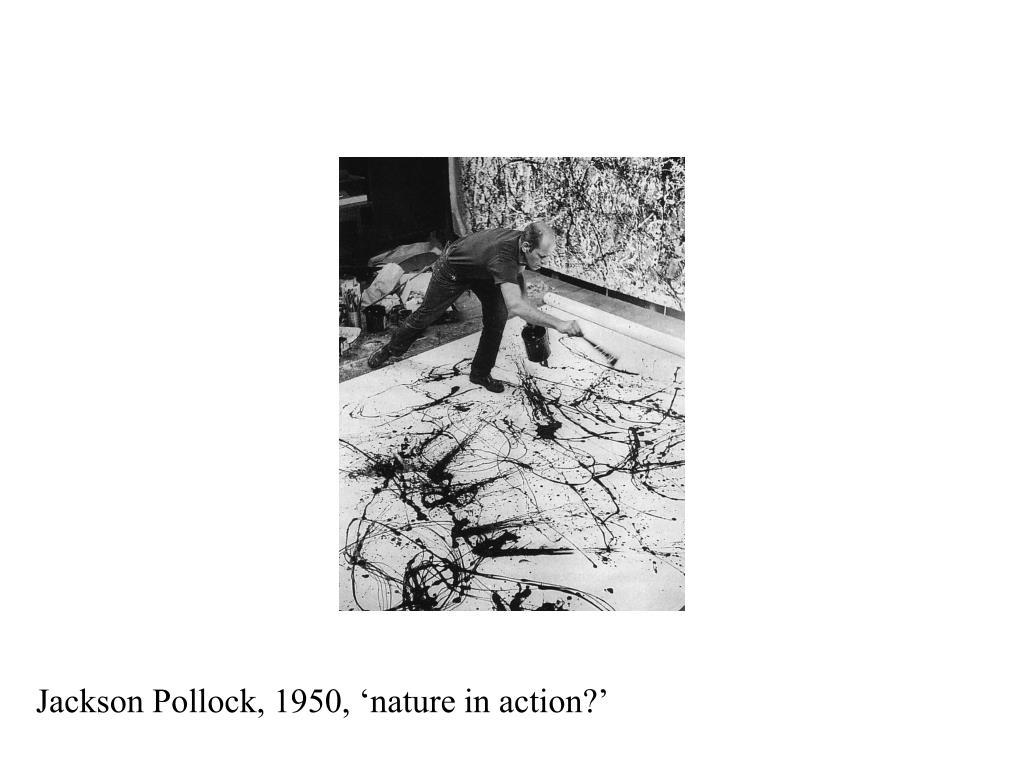 Jackson Pollock, 1950, 'nature in action?'
