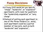 fuzzy decisions8