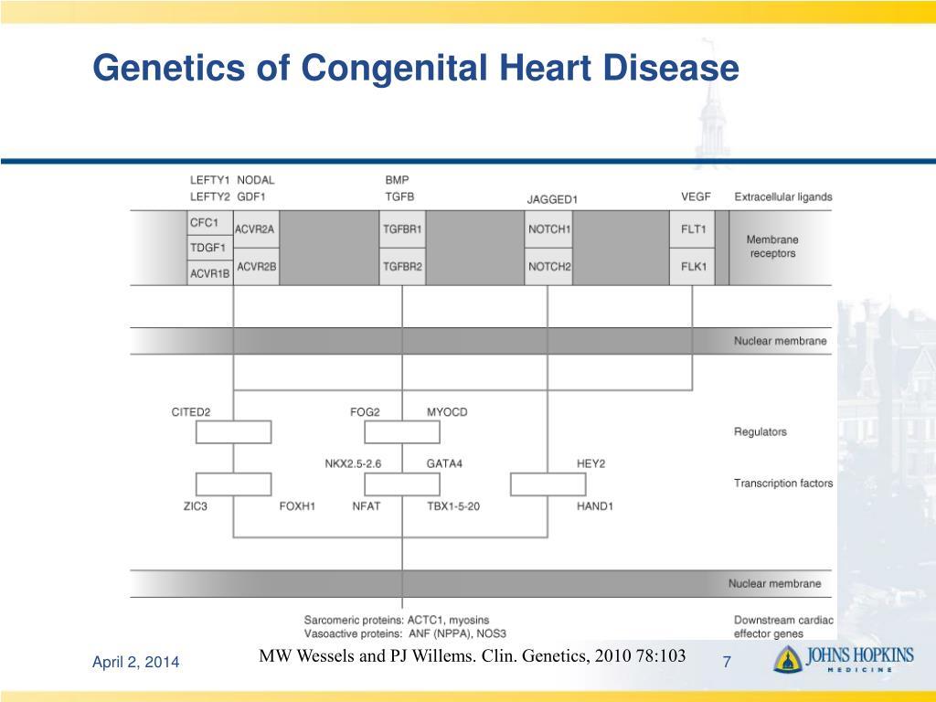 Genetics of Congenital Heart Disease