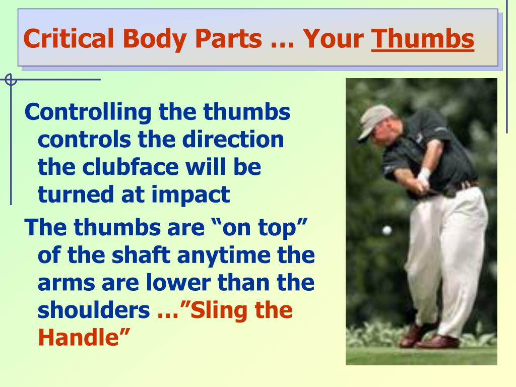 Critical Body Parts … Your