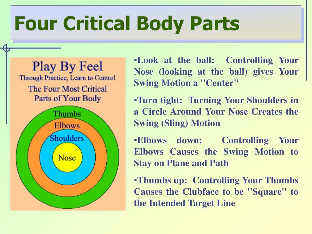 Four Critical Body Parts