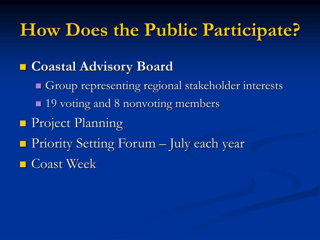 How Does the Public Participate?
