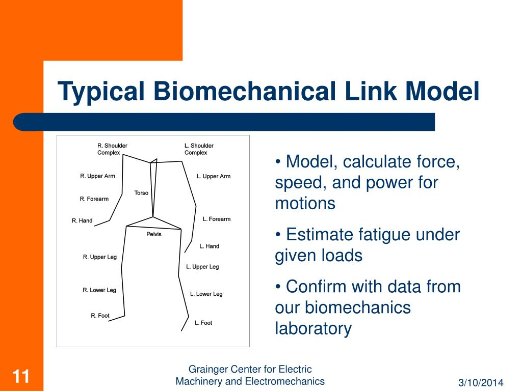 Typical Biomechanical Link Model